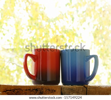 Two colorful coffee mugs in the autumn background