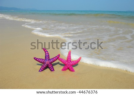 two colorful starfish sitting on beach