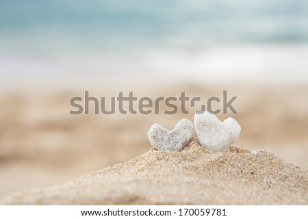 two coral hearts on a beach in Maui, Hawaii