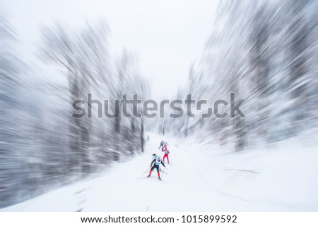 Two cross-country ski runners in front of wintry landscape #1015899592