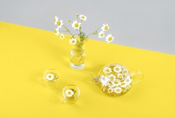 Two cups of camomile tea, transparent teapot and vase with daisy-like flowers on gray yellow background. Chamomile Tea Benefits Your Health concept. Trendy colors 2021