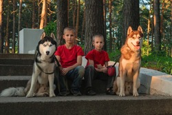 Two cute boys with dogs siberian husky sit on the steps stone staircase in summer city park in warm rays setting sun