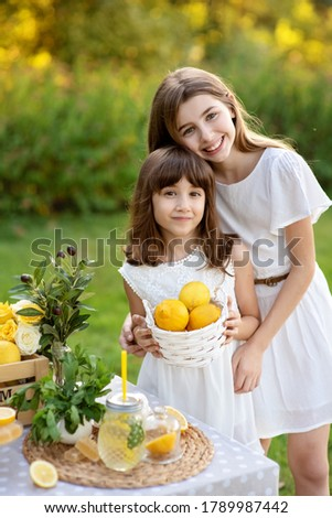 Two cute happy girls selling lemonade in park. Homemade lemonade sale concept. Lemons, mint, cocktail cans in boxes for lemonade close-up. Homemade lemonade in dispenser and copy space.
