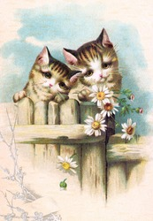 Two cute kittens on a garden gate - a vintage (c.1890) illustration.
