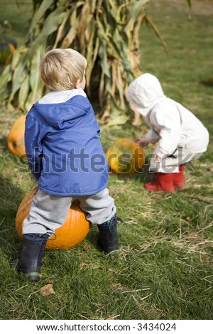 Two cute little boys selecting their pumpkins at the pumpkin patch