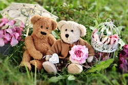 two cute teddy bears in vintage style sittingon the grass in the garden