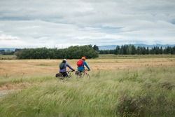 Two cyclists riding the Otago Central Rail Trail among the field of long grass blowing in the wind, South Island, New Zealand