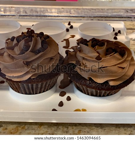 Two dark chocolate cupcakes with chocolate frosting and chocolate chip sprinkles on a cupcake carrying tray.