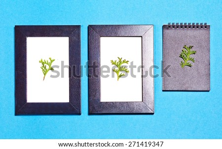 Two dark frame and note with three green twig. Blue background.