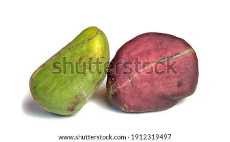 Two different color Kola nuts isolated on white Zdjęcia stock ©
