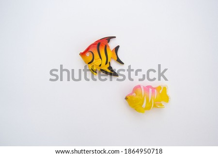 Two different dress fish lie on a white background above each other. They have little magnets in their mouths Stock photo ©