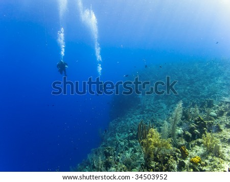 Two divers are swimming along the top of North Wall, Grand Cayman over a drop of 6000 ft. Sunlight streams down onto the reef illuminating some corals in the foreground.