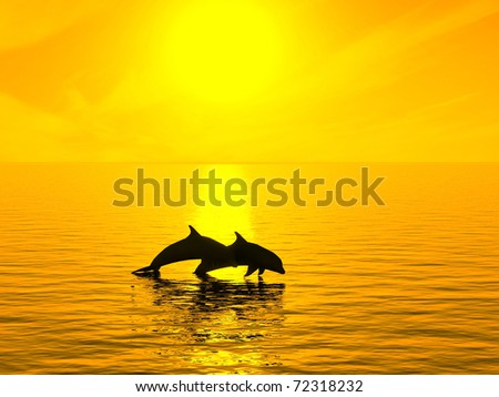 Two dolphins floating at ocean on sunset