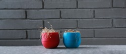 Two dry indoor flowers in blue and red flower pots. Dehydrated plants on the background of a gray brick wall. Close-up.