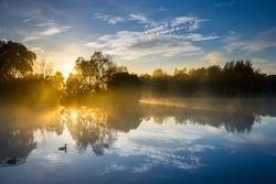 Two ducks swim their way into a beautifully calm morning on Jells Lake in Victoria, Australia, on a crisp Autumn day.