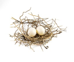 Two eggs of dove birds in brown dry grass nest, low angle, isolated on white background.