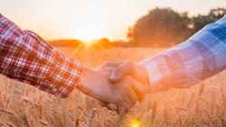Two farmers shake hands against the background of a field of wheat at sunset