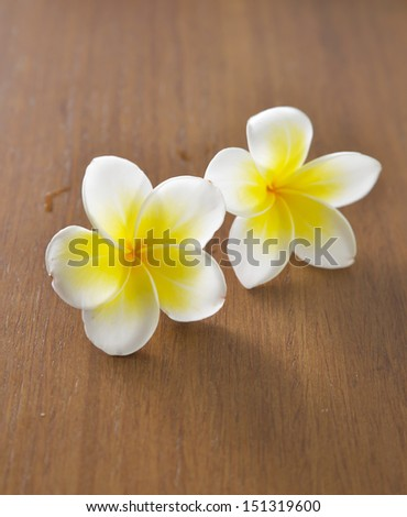 Two frangipani flowers with wood in background