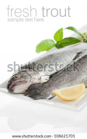 Two fresh trout fish isolated on white background