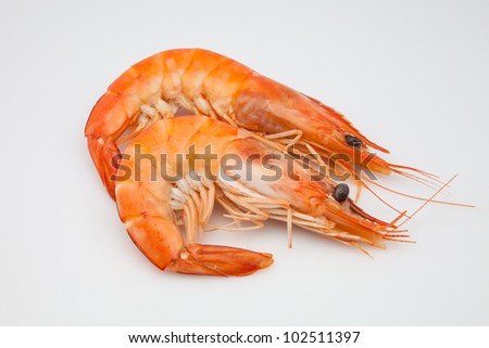 two freshly cooked king prawns