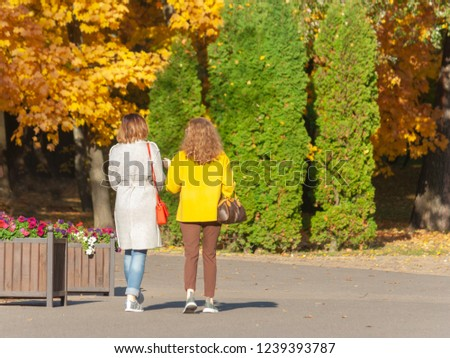 Two friends walk and chat under the crowns of yellow autumn trees in the park on a day off. #1239393787