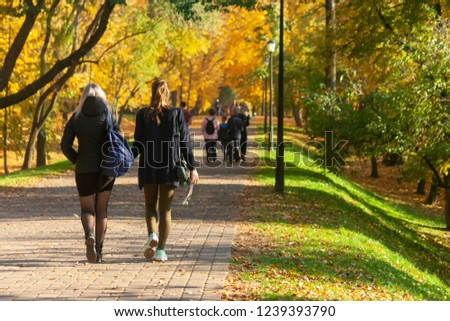 Two friends walk and chat under the crowns of yellow autumn trees in the park on a day off. #1239393790