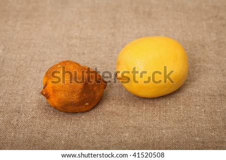 Two fruit against a canvas - bad and good lemons