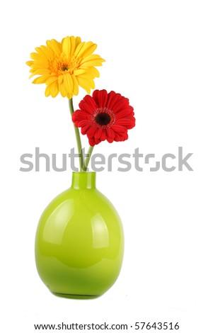 Two Gerbera daisies in vase