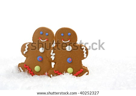 Two gingerbread cookies in snow. There is no one viewable in the image. Horizontally framed shot.
