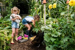 Two girls standing in a garden, holding chicken and picking vegetables.