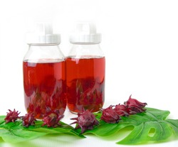 Two glass bottles filled with sucrose solution for preparation of homemade kambucha probiotic drink with tropical herbs of the red Roselle juice with white background. A drink for digestive system.