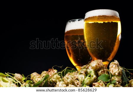 Two glasses of beer with hop over black