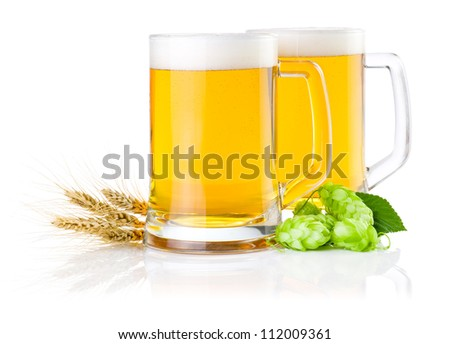 Two glasses of fresh beer with Green hops and ears of barley isolated on a white background