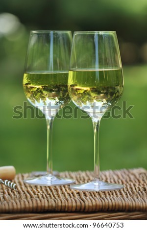 Two glasses of the white wine in the garden - stock photo