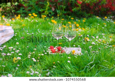 Two glasses of wine and strawberries. Picnic in a clearing with flowers. Spring in the Netherlands