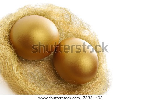 two golden eggs in the nest isolated on a white background
