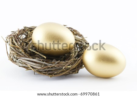 Two golden eggs with a twig nest  depict financial hopes and results; white background;