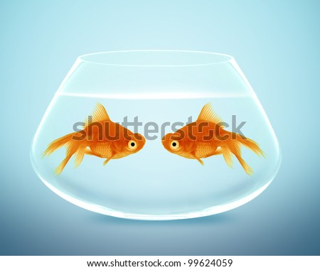 Two goldfish  in fishbowl falling in love, lose one's heart