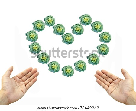 Two hand invite to green cabbage heart sign