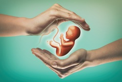 Two hands on green background with embryo in center.