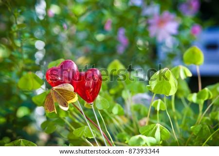Two hearts between clover