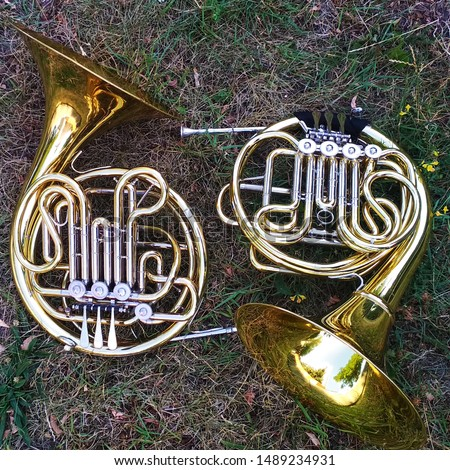 Two horn musical instruments on grass.