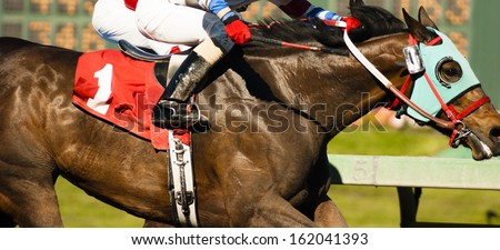 Two Horses and Jockeys Come Aross Finish Line Neck and Neck Number One ストックフォト ©