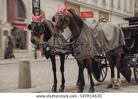 two horses in funny hats with...