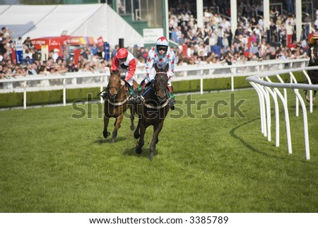 two horses racing