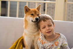 Two hugging best friends portrait - boy and his shiba inu dog sit on the sofa on roof. Friendship, love and relationship concept