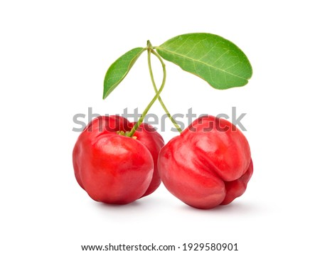 Two Juicy red Acerola cherry fruits  with green leaf isolated on white background. Clipping path.