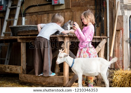 two kids are having fun at the farm with a cat, a goat and a camera