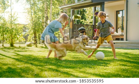 Two Kids Have fun with Their Handsome Golden Retriever Dog on the Backyard Lawn. They Pet, Play, Tackle it on the Ground And Scratch. Happy Dog Holds Toy Football in Jaws. Suburb House in the Summer Foto stock ©