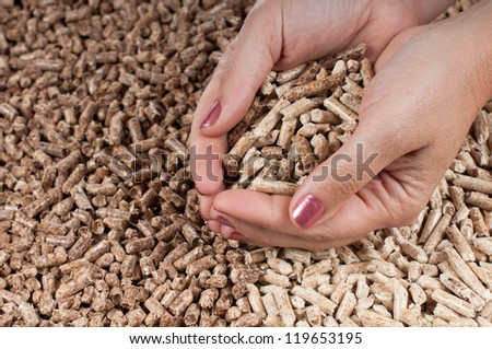 Two kind of pellets in female hands
